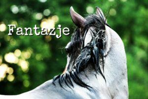 Koń Elear łypiący okiem