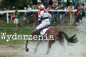 Zawodnik na koniu