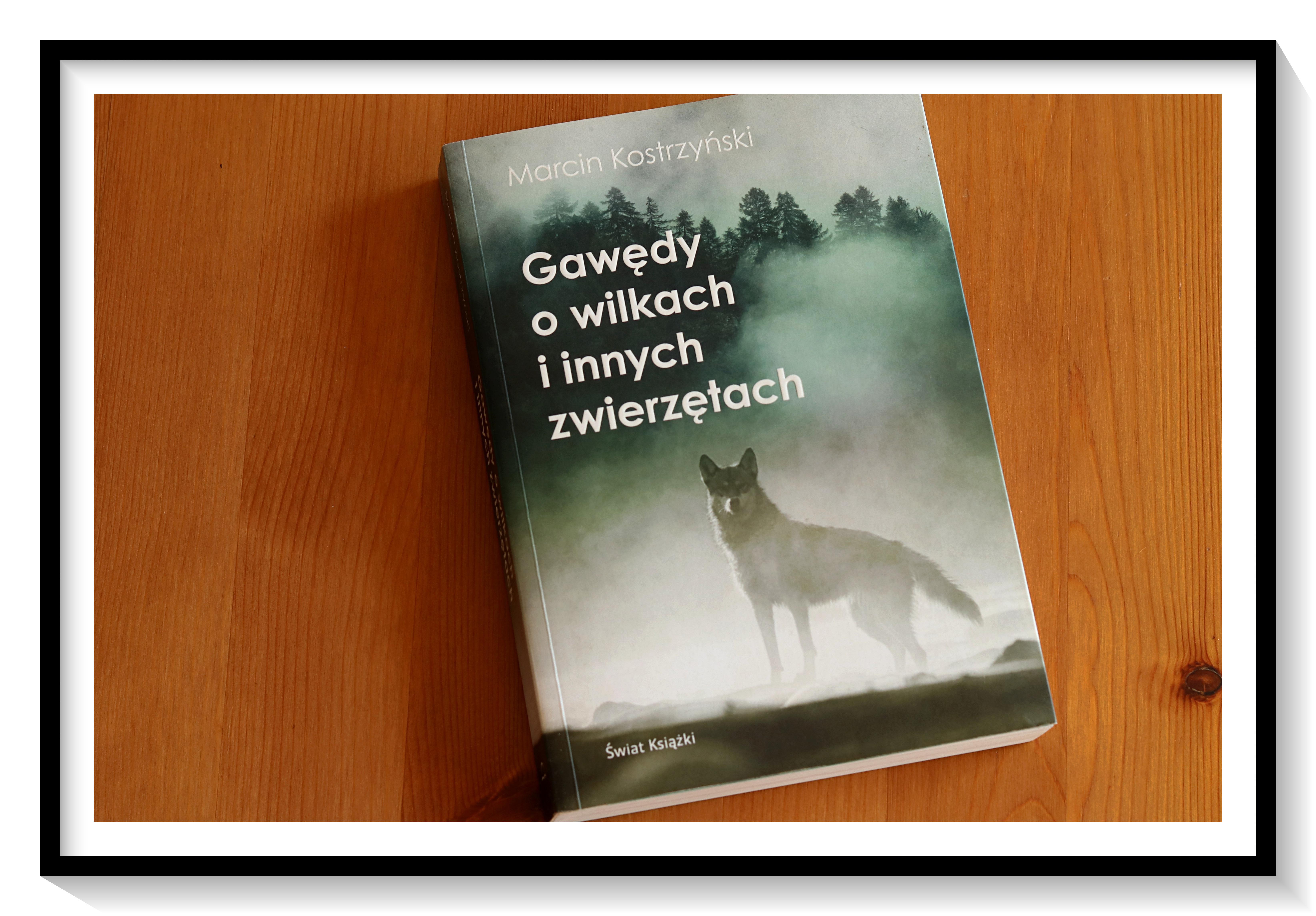 """""""Gawędy o wilkach i innych zwierzętach"""" – Marcin Kostrzyński"""